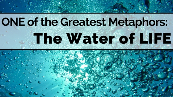 One Of The Great Metaphors The Water Of Life Reformed
